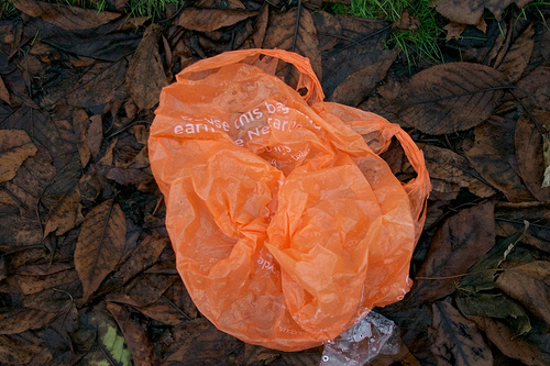 YSC_Plastic bag via EdinburghGreens